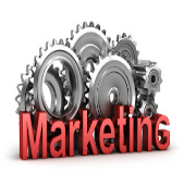 Expansion of Search Marketing Efforts is Essential for the E-Sellers